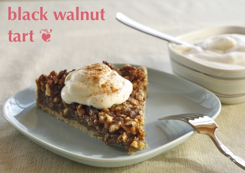 black walnut tart with maple syrup